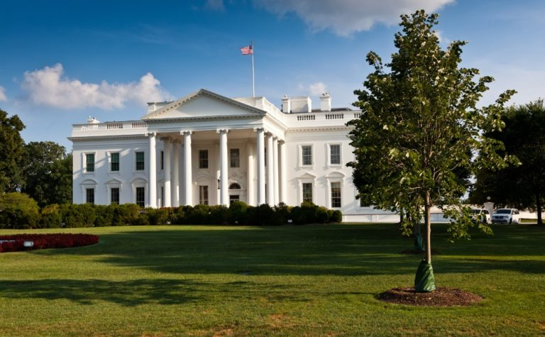 What Is the White House Internet Speed? (+ Charts)