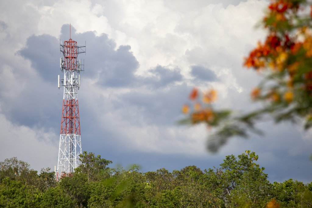 Telephone network pole background rain cloud tree orange flower foreground